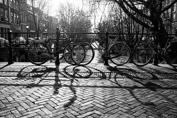Fietsen op de Oudegracht met tegenlicht van De Utrechtse Grachten