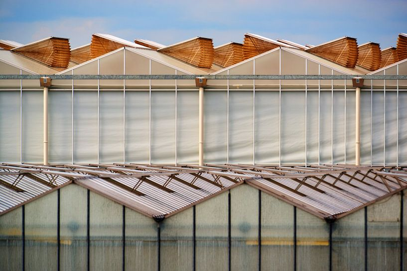 Dutch Greenhouse looking like an organsism von Georges Hoeberechts