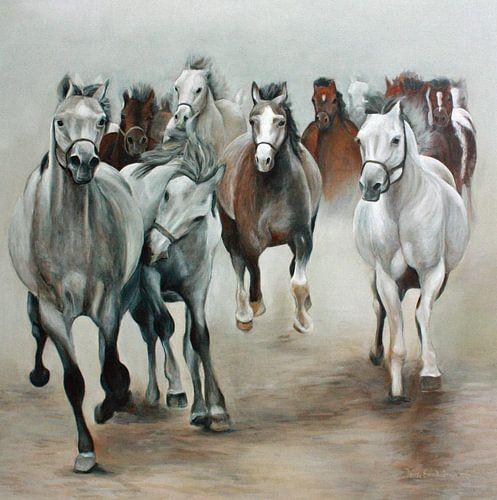 Horde Arabische Paarden