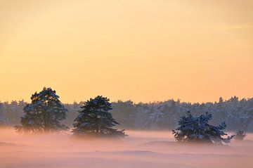 Winter zonsondergang sur Sjoerd van der Wal