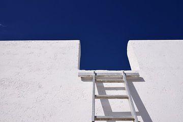 Ladder aan de muur van Ulrike Leone