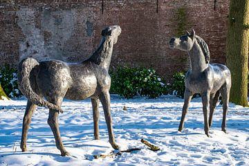 Image de poulains dans la neige sur Ingrid de Vos - Boom