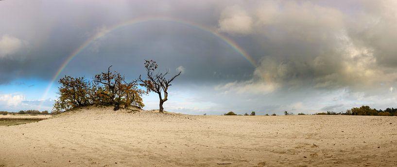 De regenboog van Nando Harmsen