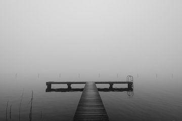 Steiger in de mist, de Potten, Sneek van Richard van der Zwan