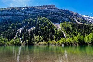 Lac de Derborence (2) van