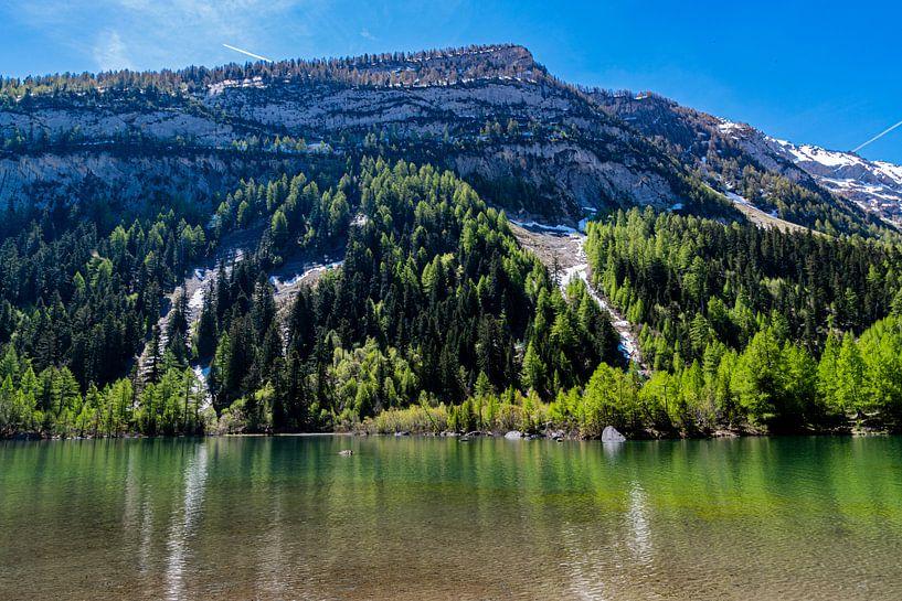 Lac de Derborence (2), Zwitserland van Ingrid Aanen