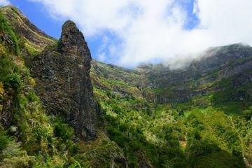 Bergen van Madeira sur Michel van Kooten
