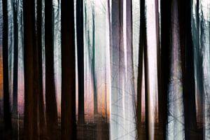 Mystical Trees van Paula van den Akker