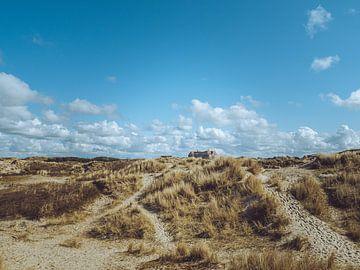 Duinen van Egmond aan Zee #4 van Photography by Demmers