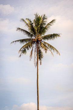 Palmboom op Bali van Ellis Peeters