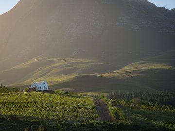 Idyllische wijngaard in de heuvels van Hemel en Aarde vallei in Zuid-Afrika van Teun Janssen