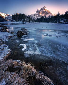 Bevroren van Markus Stauffer