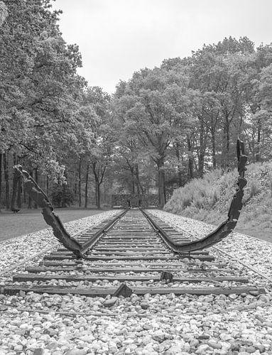 Kamp Westerbork van