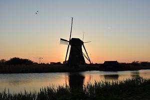 Typisch Nederlands van Chayenne Batenburg-Boom