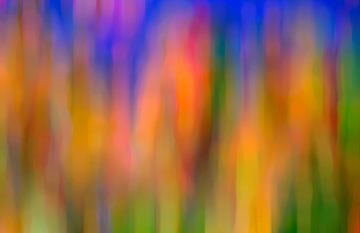 Magnificence van Wil van der Velde/ Digital Art