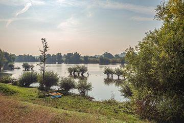 Plaines d'inondation de la rivière Waal aux Pays-Bas