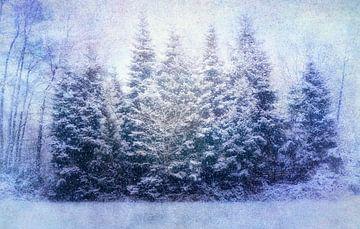 Schneegestöber von Claudia Moeckel