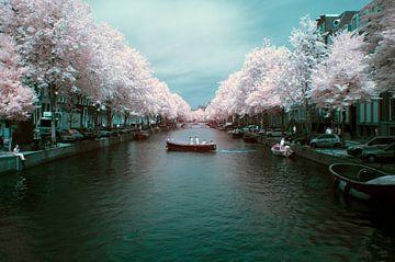 De Amsterdamse Keizersgracht in infrarood 720NM