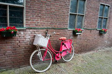 Rode fiets op boerderij van Arthur van Iterson