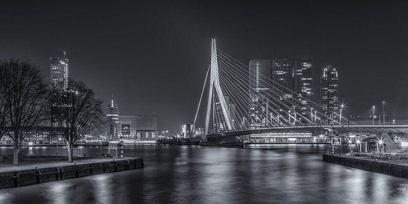 Erasmusbrug in Rotterdam in de avond - 4 van Tux Photography