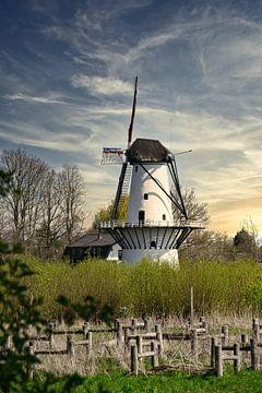De molen in Beesd van Tina Linssen