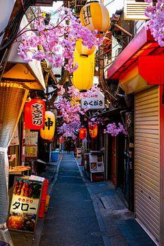 Kirschblüte und Lichter in Tokio von Mickéle Godderis