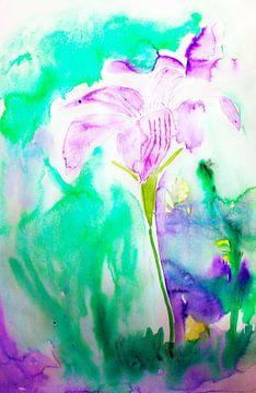 Glockenblumen von M.A. Ziehr
