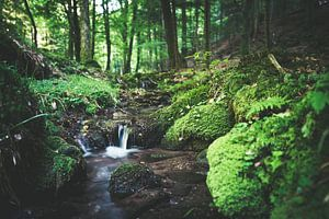 Kleine Cascade van