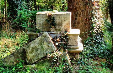 Zentralfriedhof 3 van Ilona Picha-Höberth