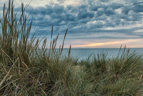 In de duinen van Bredene aan Zee met zonsdondergang van