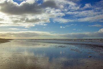 Strand bei Noordwijk von Discover Dutch Nature