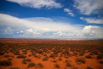 Arizona Horizon in de woestijn van