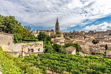 Wijnranken in Saint-Émilion van Koen Henderickx