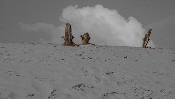 Zandverstuiving van Richard de Nooij