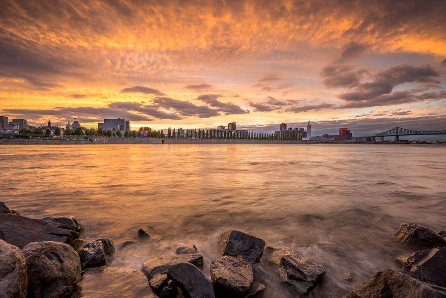 Montreal van Frederik van der Veer