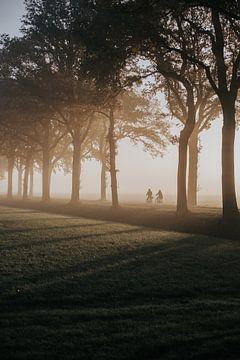 Ochtendroute in de mist