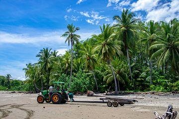 Strand Costa Rica mit den Palmen von Merijn Loch