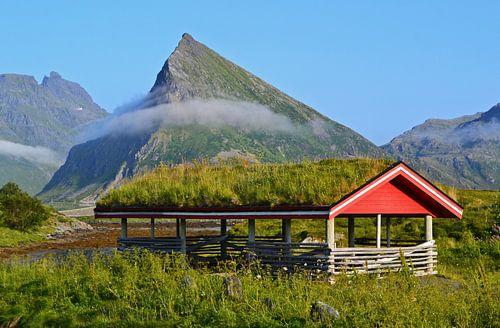 Schuur met grasdak in Noorwegen van