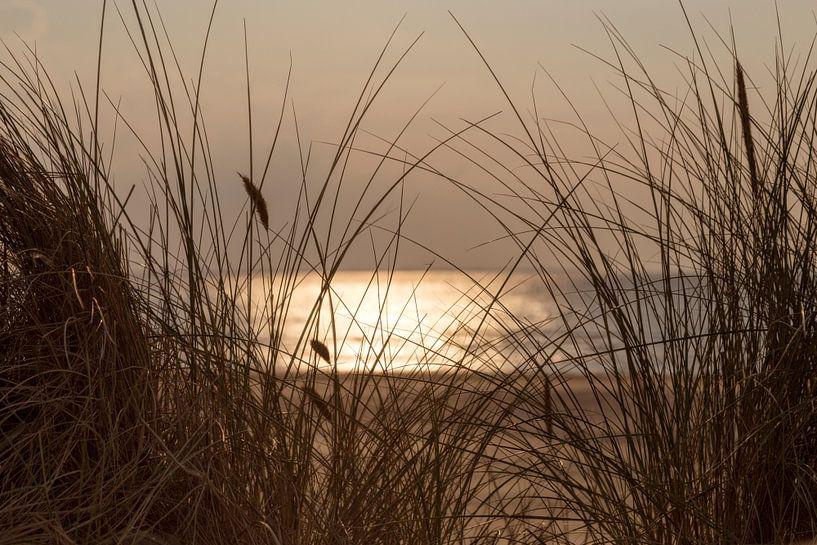 Zonsondergang op een zomerse dag aan het strand.. van Miranda van Hulst
