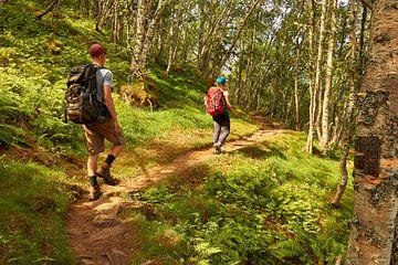 Un homme et une femme errant dans la forêt sur Christian Buhtz