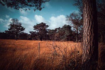 Landschaft von b.dutch