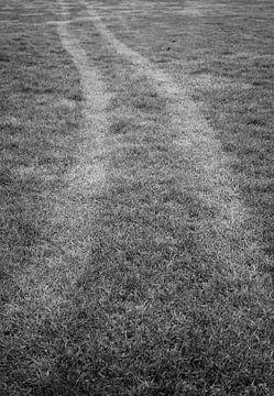 De weg naar... van Anne van de Beek