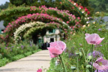 Der Garten von Monet von Ingrid de Vos - Boom