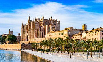 Spanje Mallorca, Kathedraal van Palma de Mallorca, Balearen van Alex Winter