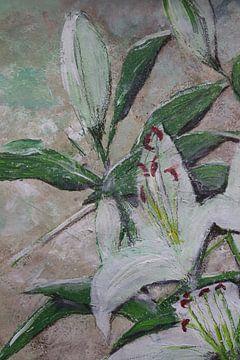 Lilien - Ausschnitt- Nahaufnahme von Susanne A. Pasquay