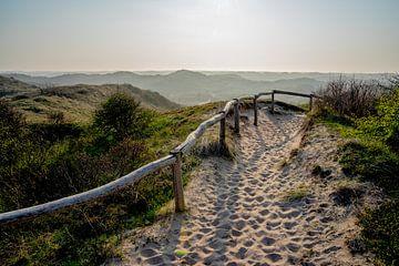 Les dunes d'Egmond sur Hottentot