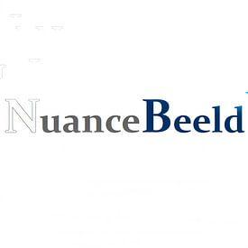 Nuance Beeld avatar