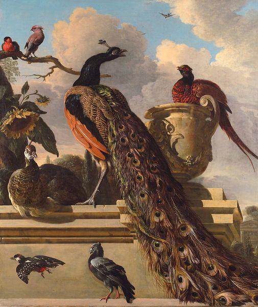 Vogels in het Park, Melchior d'Hondecoeter van Bridgeman Masters
