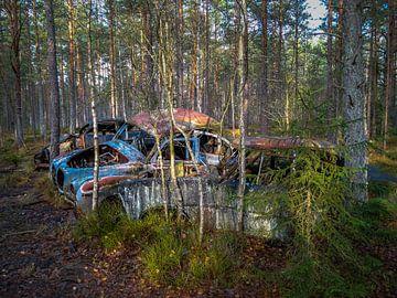Verroeste, oude auto's, achtergelaten in het bos