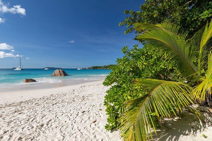 Sandstrand auf der Seychelleninsel Praslin von Reiner Conrad
